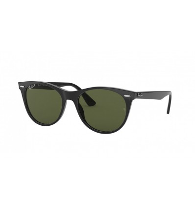 Gafas de sol Ray Ban Wayfarer II Evolve RB2185 Black - Polar Green 901-58)