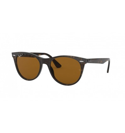Ulleres de sol Ray Ban Wayfarer II Evolve RB2185 Stripped Havana - Polar Brown (902-57)