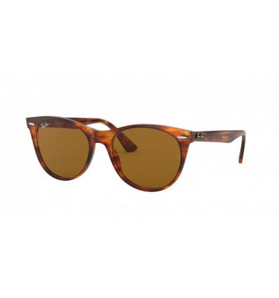 Ulleres de sol Ray Ban Wayfarer II Evolve RB2185 Stripped Havana - Brown (954-33)